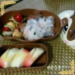 幼稚園、保育園の遠足から考えるお弁当箱はどっちがいい?