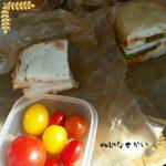 11月24日はサンドイッチとトマトサラダ弁当